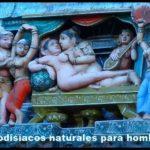 afrodisíacos naturales para hombres