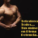tetosterona